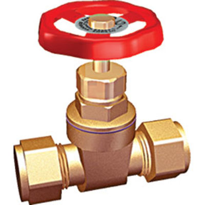 Picture of 22mm GATE VALVE (BS5154)