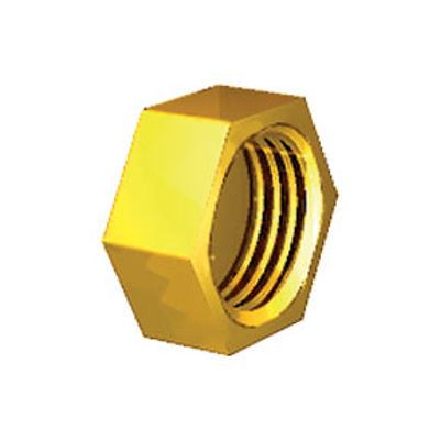 """Picture of 1/4"""" BRASS BLANKCAP"""